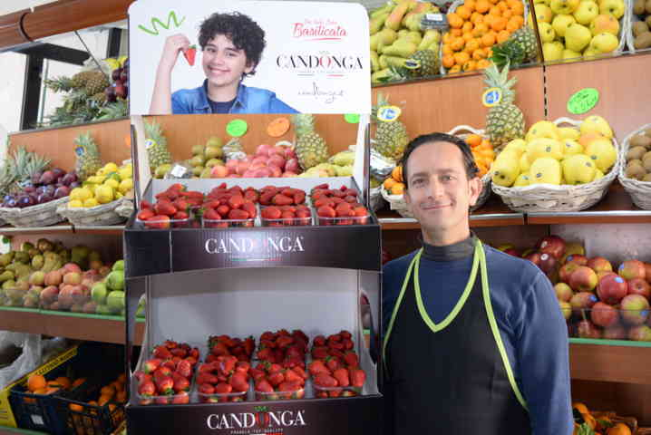 500 Candonga Fragola Top Quality® Point in tutt'Italia